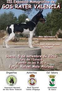 Sueca acogerá en septiembre la tercera exposición monográfica del perro ratonero valenciano