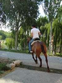 La Asociación Monte Modelo Urbión fomentará el turismo en Burgos con rutas al caballo por el Camino del Cid desde hoy