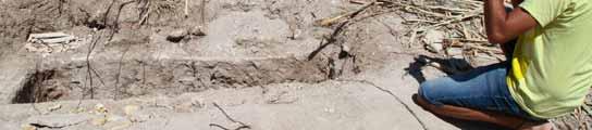 Las fuertes lluvias dejan al descubierto una necrópolis romana en Córdoba  (Imagen: SALAS / EFE)