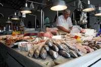 Torrontegui prevé que la costera del bonito supere a la de 2009 y que el precio aumente a final de temporada