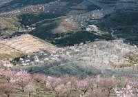 Una guía del MARM cita la cereza del Jerte entre las mejores frutas y hortalizas de España