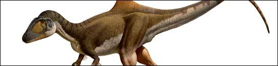 Confirman una nueva especie de dinosaurio