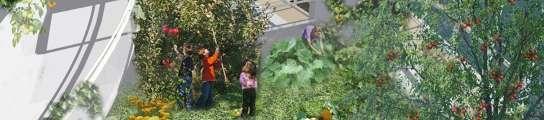 La nueva utopía es la ciudad verde, pero ¿tiene futuro la agricultura urbana?  (Imagen: ARCHIVO)