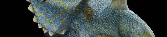 Descubren en EE UU dos especies de dinosaurio, una de ellas con quince cuernos  (Imagen: EFE)