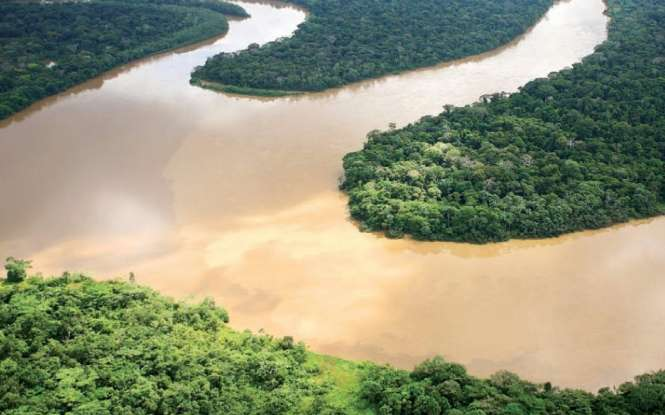 El Amazonas. El Amazonas es el bosque húmedo más extenso de la Tierra. Se le conoce por su inigualable diversidad biológica.
