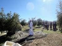 Diputación recibe a los periodistas checos y polacos que visitan Jaén para conocer la cultura del aceite de oliva