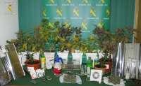 Detenidas dos personas y desmantelado un laboratorio de marihuana en Agoncillo