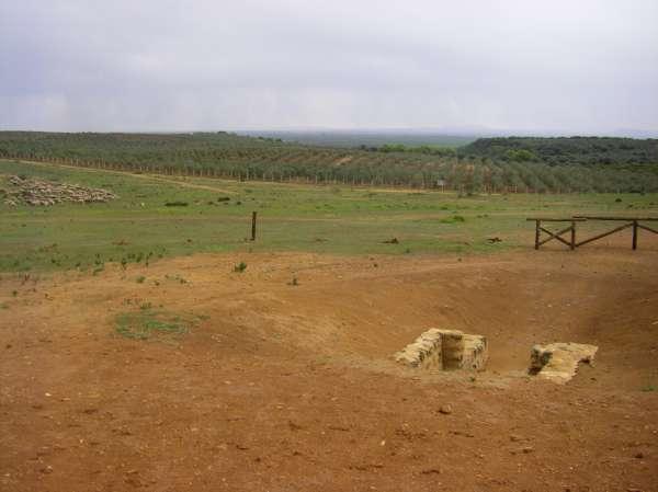 Los conservacionistas recurren el acuerdo plenario de Proyecto Hombre en defensa de El Gandul