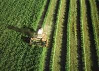 La Consejería de Agricultura y Agua organiza un ciclo de tres jornadas bajo el título 'Murcia, región agraria'