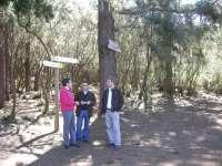 La Orotava (Tenerife) contará con un parque forestal de aventura para fomentar el ocio y el deporta en la naturaleza