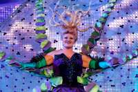 'A pulpiar a Las Palmas' y 'Amanecer marinero', ganadores del concurso de disfraces del Carnaval capitalino