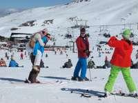 Más de 47.000 esquiadores disfrutan del puente de Andalucía en Sierra Nevada, con un 90% de ocupación