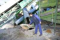 España vuelve a instar a Bruselas a que active el almacenamiento privado del aceite de oliva