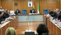 El presidente de la Audiencia y abogados de 'Ballena Blanca' defienden los conocimientos del Tribunal