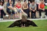 Sendaviva celebra este fin de semana el Día de las Aves con actividades para los más pequeños
