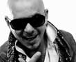 <p>Pitbull</p>