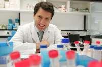 Unos 400 especialistas se reúnen esta semana en el Congreso de la Sociedad Española de Inmunología en Pamplona