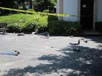 La explosión de una papelera en la Plaza España se produjo por unos petardos de feria adheridos a una bengala de barcos