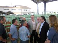El alcalde de Talavera visita el Mercado Nacional de Ganado para empezar a estudiar sus posibilidades de desarrollo
