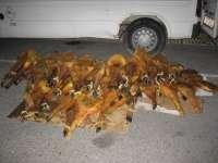 Intervenidos más de 60 jamones no aptos para el consumo humano que estaban destinados a perros