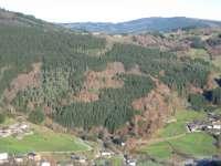 El MARM edita el libro 'Política Forestal y Cooperación Internacional'