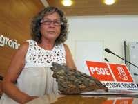 PSOE critica la tala de