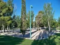 La campaña para ahuyentar los estorninos de la Plaza Aragón de Monzón se realiza 15 días antes que en el año 2010