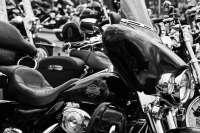 Concesionario de Harley Davidson en Bilbao y San Sebastián celebran una jornada de puertas abiertas el 1 y 2 de octubre