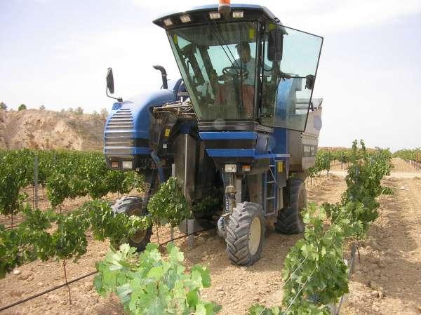 Unas 6.000 extremeñas se beneficiarán de la ley de titularidad compartida en las explotaciones agrarias