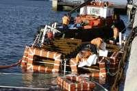 La Autoridad Portuaria se hará cargo del reflotamiento de El Vaporcito, previsto para el próximo martes
