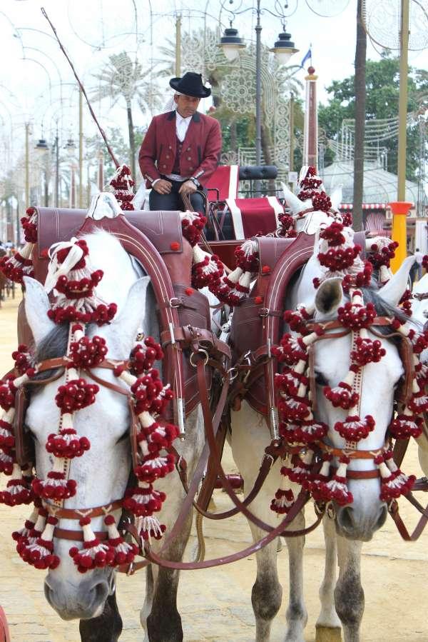 El Ayuntamiento de Jerez recortará en un día la Feria del Caballo como medida de austeridad