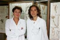 Investigadoras de la UN estudian el potencial de las plantas medicinales para tratar el Alzheimer