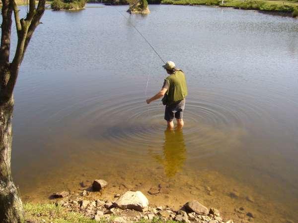 Ecologistas dicen que la normativa de pesca que impulsa el Gobierno puede