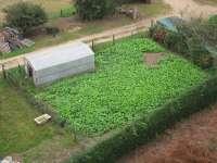 La Consejería de Agricultura adelanta 4,5 millones del Pago Único correspondientes a la línea de frutos de cáscara