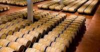 Las bodegas de Gran Canaria ya exportan sus vinos en el mercado europeo y americano aunque afirman tener barreras