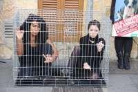 Los activistas de AnimaNaturalis se enjaulan en el mercado de Pere Garau para protestar contra la venta de animales