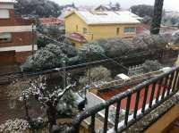 800 vecinos de Calonge, Palafrugell y Castell-Platja d'Aro están sin luz por la nieve