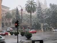 Los Bomberos de Palma realizan una decena de servicios relacionados con incidentes por el temporal