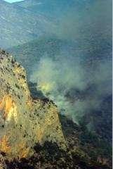 Los agentes rurales califican los incendios del Pirineu de Lleida de