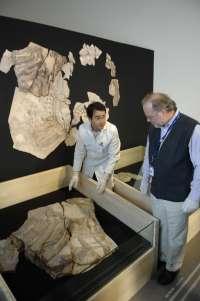 Exhiben fósiles del Cazador jorobado de Cuenca, el dinosaurio más completo hallado en España
