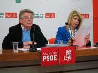 Cabaña (PSOE) acusa al subdelegado del Gobierno de usar su cargo como
