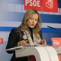 El PSOE pedirá la comparecencia del consejero de Educación para que explique la