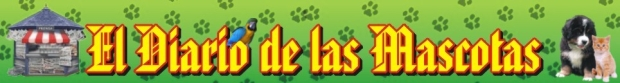 <p>El diario de las mascotas.</p>