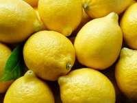 Asaja Alicante insta al Gobierno a vetar la importación del limón argentino a la UE