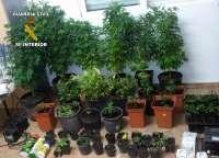Guardia Civil y Policía Local detienen a dos personas por tráfico de droga en Ramonete-Lorca
