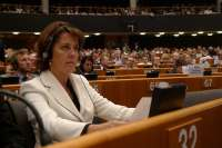 Barcina dice sobre la amnistía fiscal que