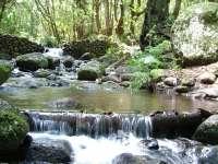 El Ministerio de Medio Ambiente organiza un curso de guías de senderismo del Parque Nacional de Garajonay