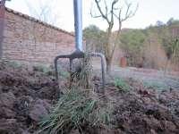 El PSOE promoverá la aplicación de la Ley de Desarrollo Rural en todas las administraciones