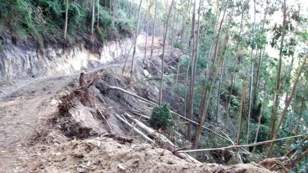 La Coordinadora Ecologista denuncia una pista abierta de manera ilegal en Ribadedeva