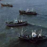 La flota cefalopodera se concentra en Pontevedra para exigir un nuevo acuerdo que le deje faenar en Mauritania